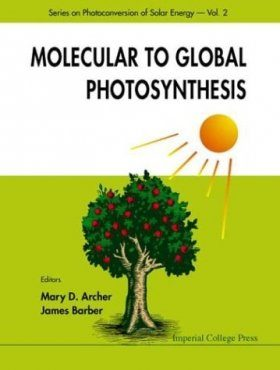 Molecular to Global Photosynthesis