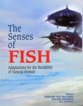 The Senses of Fish