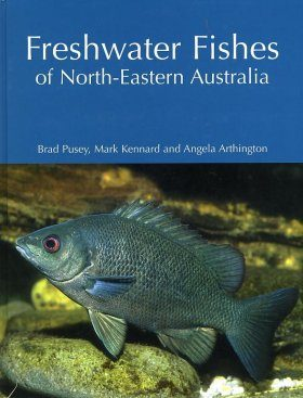Freshwater Fishes of North-Eastern Australia
