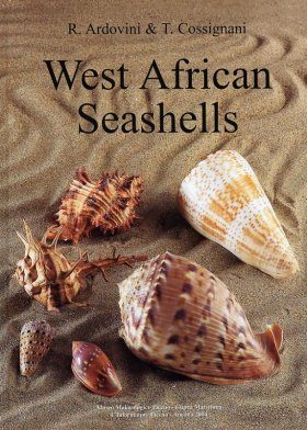 West-African Seashells