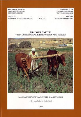 Draught Cattle