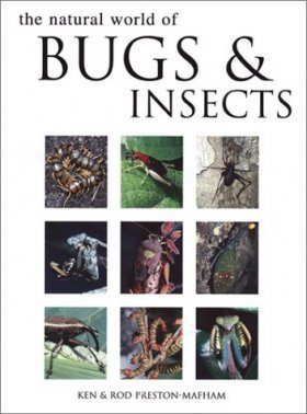 Natural World of Bugs and Insects, The