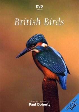 DVD Guide to British Birds (All Regions)