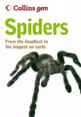 Collins Gem Guide: Spiders