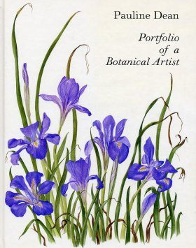Portfolio of a Botanical Artist