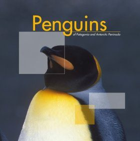 Penguins of Patagonia and Antarctic Peninsula