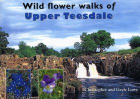Wild Flower Walks of Upper Teesdale