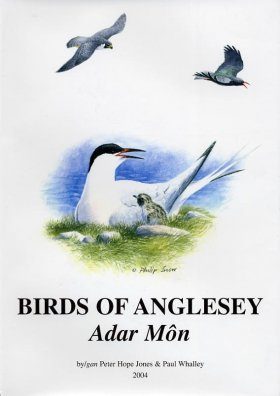 Birds of Anglesey