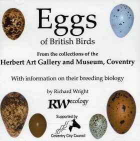 Eggs of British Birds