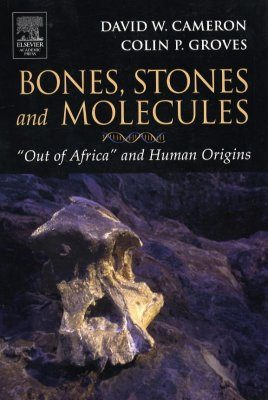 Bones, Stones and Molecules