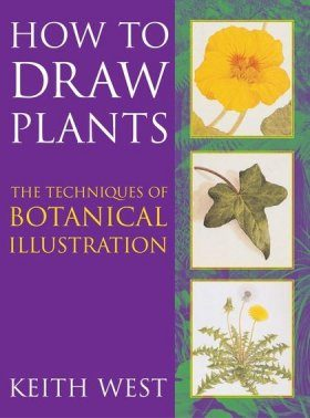 How to Draw Plants