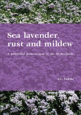 Sea Lavendar, Rust and Mildew