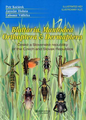 Blattaria, Mantodea, Orthoptera and Dermaptera of the Czech and Slovak epublics - Illustrated Key