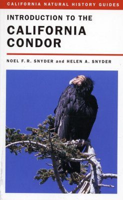 Introduction to the California Condor