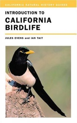 Introduction to California Birdlife