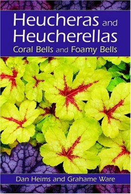 Heucheras and Heucherellas