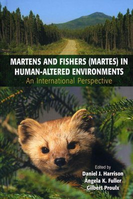 Martens and Fishers (Martes) in Human-Altered Environments