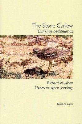 The Stone Curlew