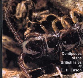 Centipedes of the British Isles