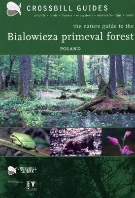 Crossbill Guide: Bialowieza Primeval Forest, Poland