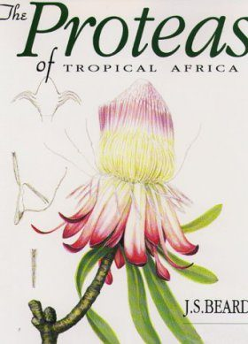 The Proteas of Tropical Africa