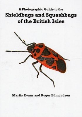 Photographic Guide to Shieldbugs and Squashbugs of the British Isles