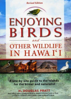 Enjoying Birds and Other Wildlife in Hawaii