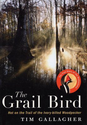 The Grail Bird
