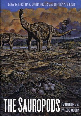 The Sauropods