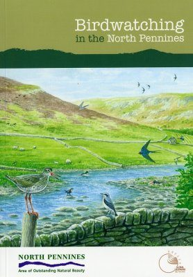 Birdwatching in the North Pennines
