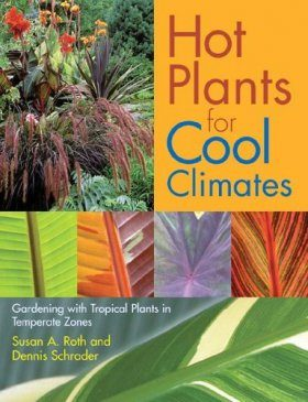 Hot Plants for Cool Climates