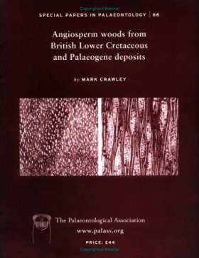 Angiosperm Woods from British Lower Cretaceous and Palaeogene Deposits