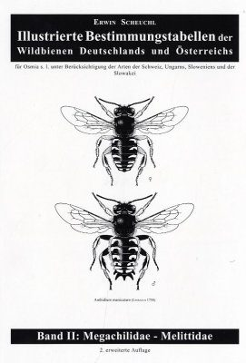 Illustrierte Bestimmungstabellen der Wildbienen Deutschlands und Österreichs, Band 2: Megachilidae und Melittidae [Illustrated Determination Tables of the Wild Bees of Germany and Austria, Volume 2: Megachilidae and Melittidae]