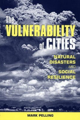 The Vulnerability of Cities