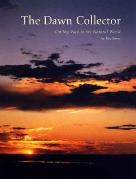 The Dawn Collector: On My Way to the Natural World