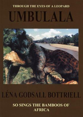 Umbulala: Through the Eyes of a Leopard