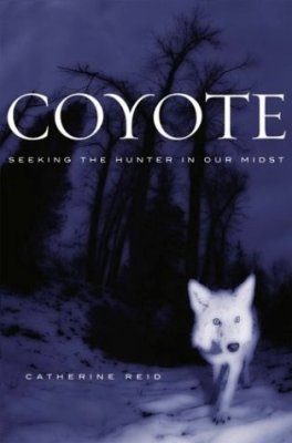 Coyote: Seeking the Hunter in Our Midst