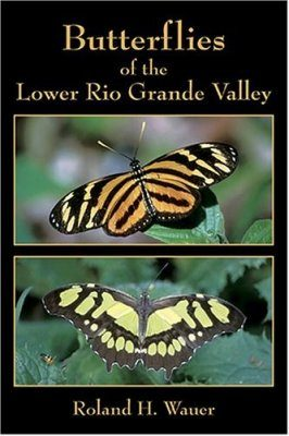 Butterflies of the Lower Rio Grande Valley