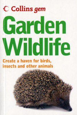 Collins Gem Guide: Garden Wildlife