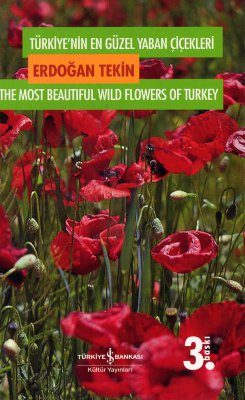 The Most Beautiful Wild Flowers of Turkey