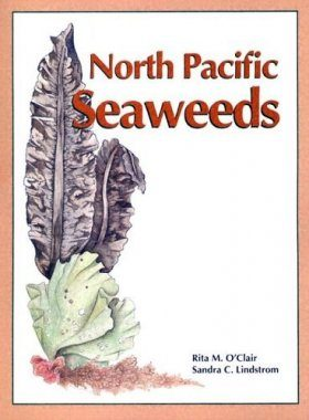 North Pacific Seaweeds