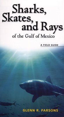 Sharks, Skates and Rays of the Gulf of Mexico