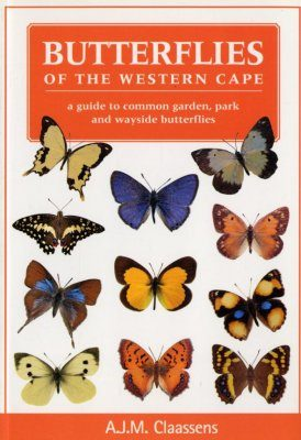 Butterflies of the Western Cape