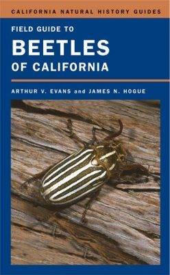 Field Guide to Beetles of California