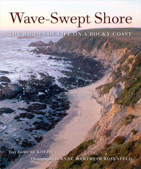 Wave-Swept Shore