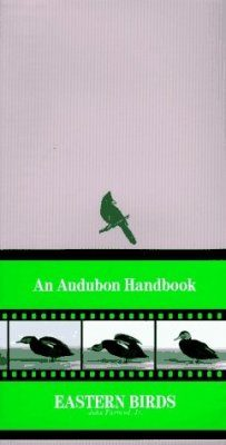 Eastern Birds: An Audubon Handbook