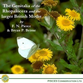 The Genitalia of the Rhopalocera and Larger British Moths
