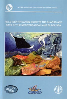 Field Identification Guide to the Sharks and Rays of the Mediterranean and Black Sea