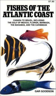 Fishes of the Atlantic Coast