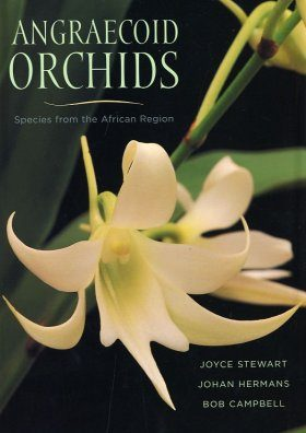 Angraecoid Orchids